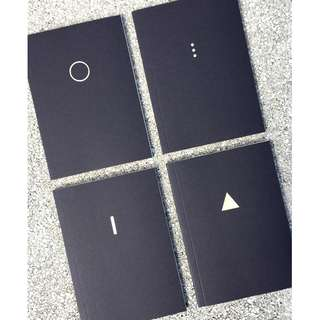 The Minimalist (Set of 4 notebooks)