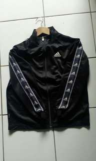 Tracktop Adidas Tapped