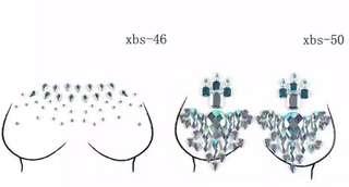 Body Gems Petals stickers 18.5*13cm