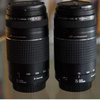 Canon EF 75-300mm USM