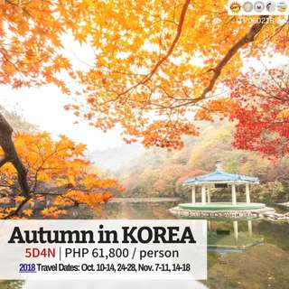 5D4N Autumn in Korea