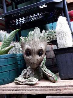 Guardian of the Galaxy. Baby Groot Pot