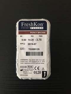 Freshkon Color Lens in Perky Brown
