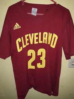 Cleveland t-shirt james