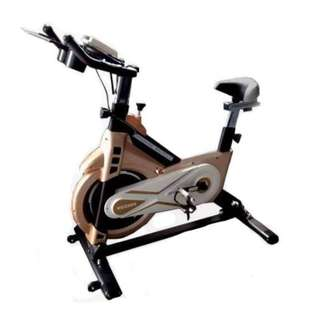 Spinning Stationary Bicycle Dynamic Professional Ultraflex