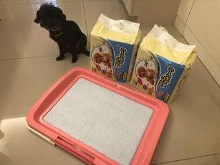 🚚 引誘型尿布50入*2&尿盤乾燥粉色