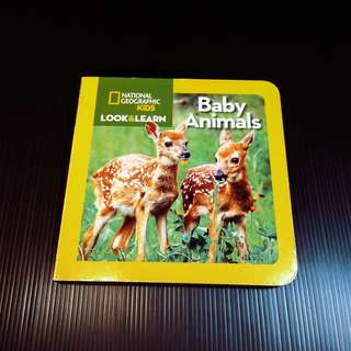 Baby Animals (National Geographic Kids)