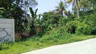 Di Jual Tanah Kosong 1,9 Hektar