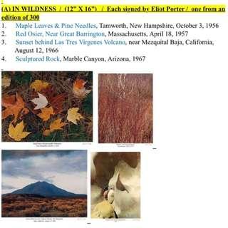 Legendary wilderness Photographer Eliot Porter : 16 original works