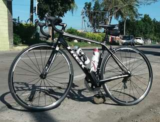 Road Bike (Trek Madone 3.1)