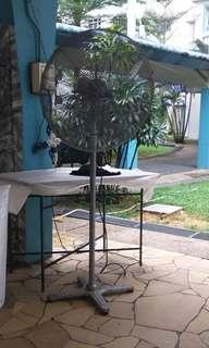 Standing Fan For Rental