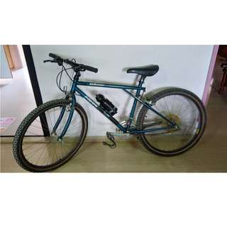 GT All Terra Karakoram Elite Mountain Bike