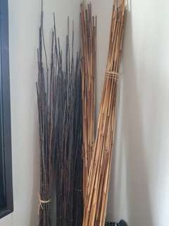 Decorative Tall Twigs and Tall Bamboo Sticks