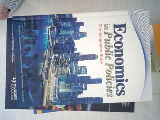 Economics in public policies the Singapore story