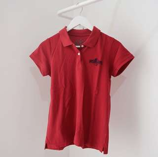 universal studio polo shirt