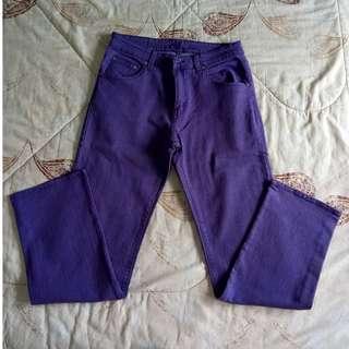 PLUS SIZE Colored Pants
