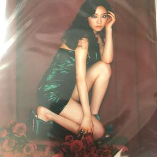 SNSD Taeyeon A4 photo B