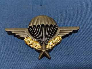 French airborne wing