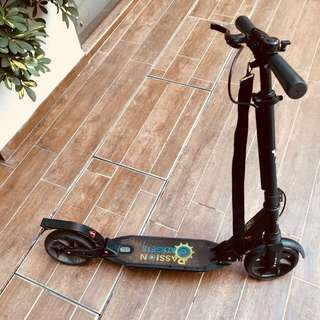 Foldable kick scooter with free strap and bell