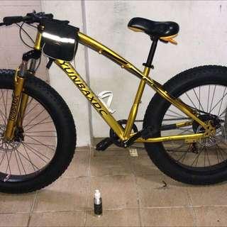 Gold fat bike
