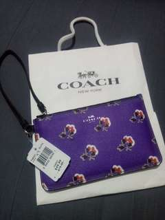 Brandnew Coach Purse