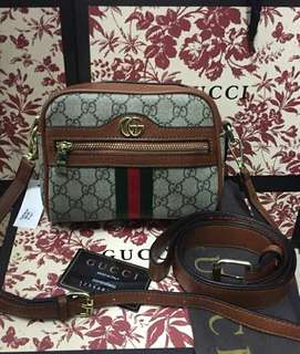 Gucci 2 way Bag