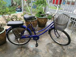 Ladies Bicycle for Sale!