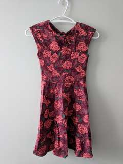 Aritzia talula rose print dress