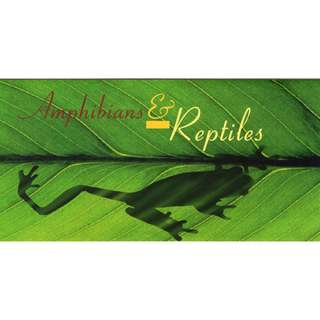 1999 Amphibians & Reptiles Commemorative Stamp Issue
