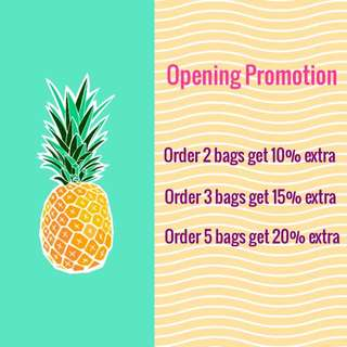 Opening Promotion Lactation Cookies