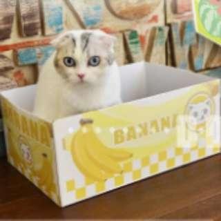 香蕉紙盒,貓窩,超得意
