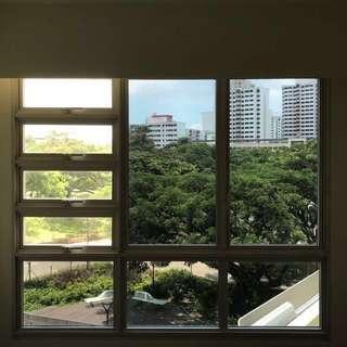 Window Solar Film
