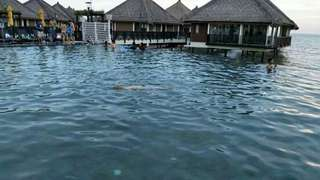 AVANI RESORT SEPANG GOLD COAST