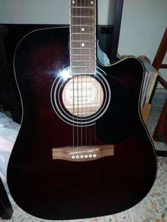 Guitar brand Santa Cruz