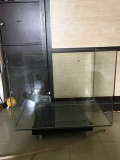 2 ft fish tanks