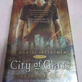 The Mortal Instruments Book 3: City of Glass