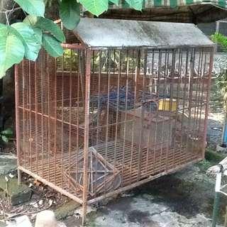 Steel Dog House