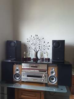 High end Home amplifier system