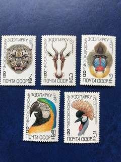 蘇聯 動物 鸚鵡 猩猩 豹 羊 鳥郵票 5全