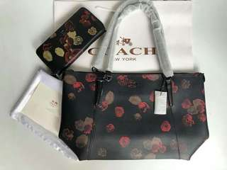 COACH BAG & WALLET SET