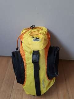 Small backpack by Salewa
