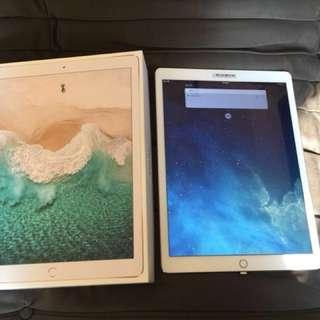 Apple iPad Pro 12.9 有保養 256g
