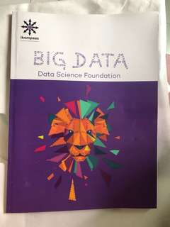 Big Data Science Foundation