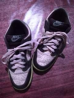 Nike Dunk Low Pro