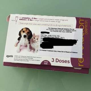 <Free Mailing> Revolution Kitten / puppy (ONE dose)