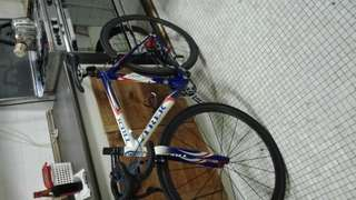 Trek full carbon road bicycle