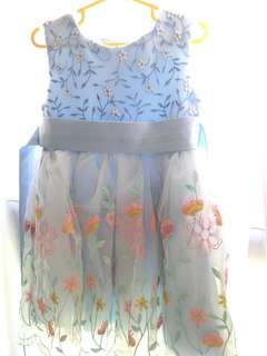 Dress ( Toddler princess dresses)