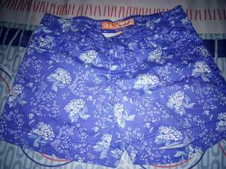 Dual pants