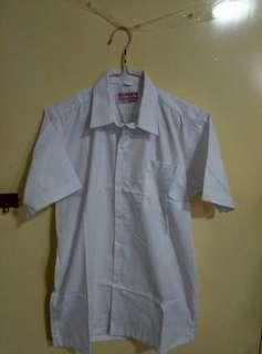 校服短袖白恤衫
