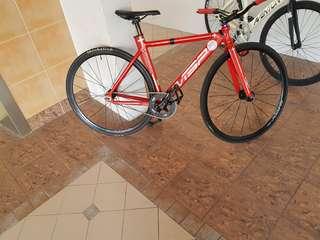 Rinpoch rw565(test market)